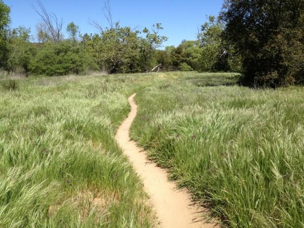 Los Penasquitos Canyon Preserve - Sorrento Hills California
