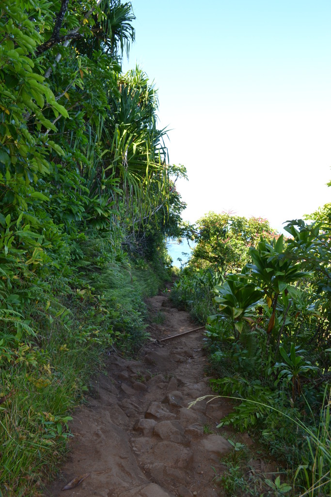 The trail going to Hanakapiai Beach