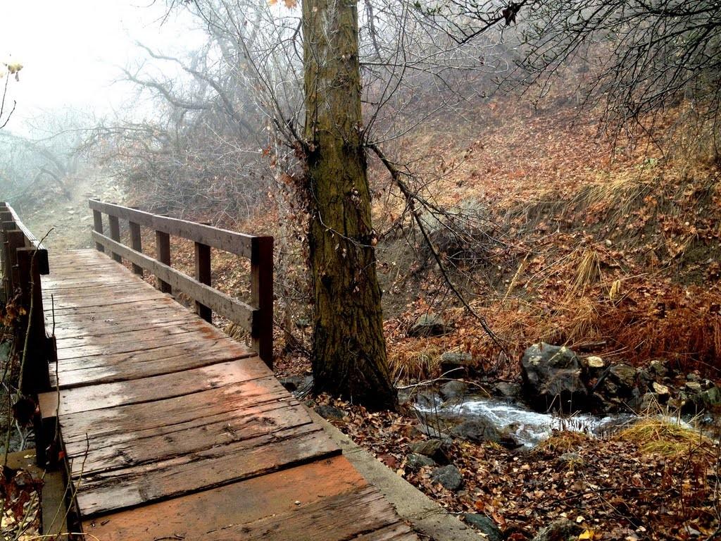 Holmes Creek Bridge