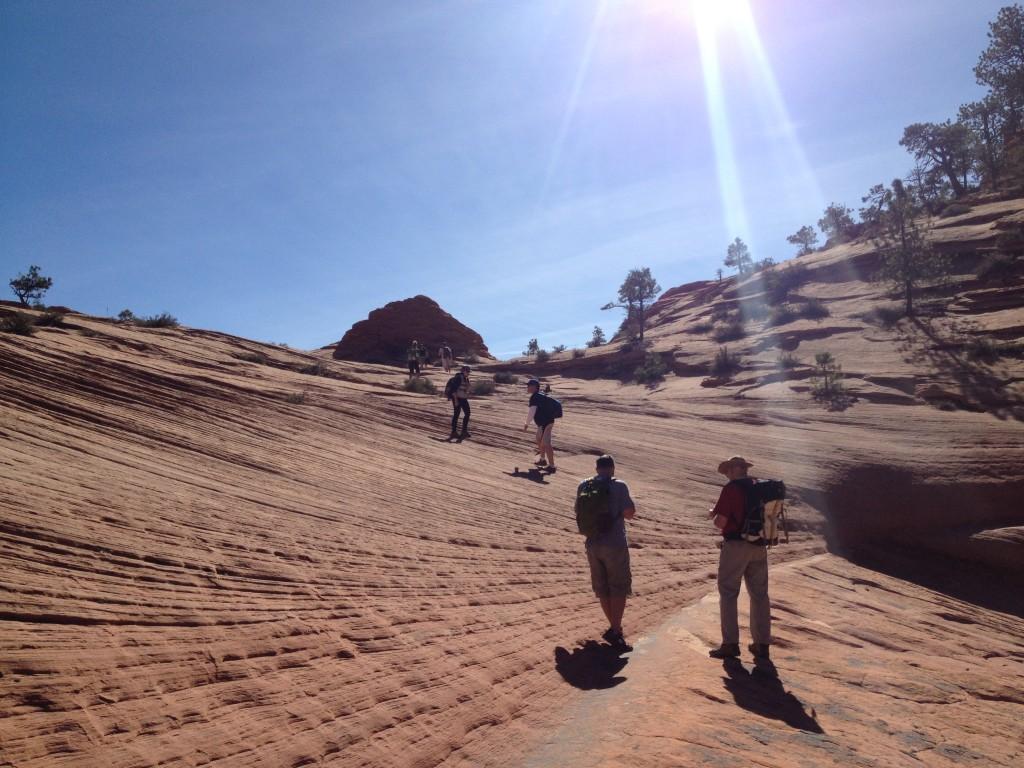 Dinosaur Dung Rock