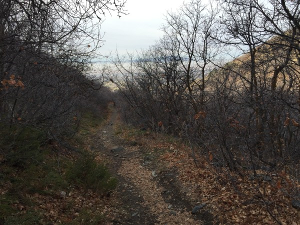 It's a beautiful trail in the fall