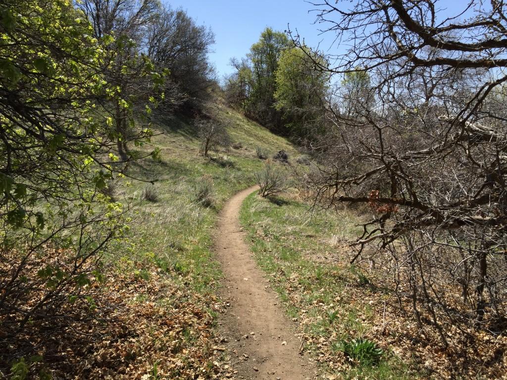 East Mountain Wilderness Park