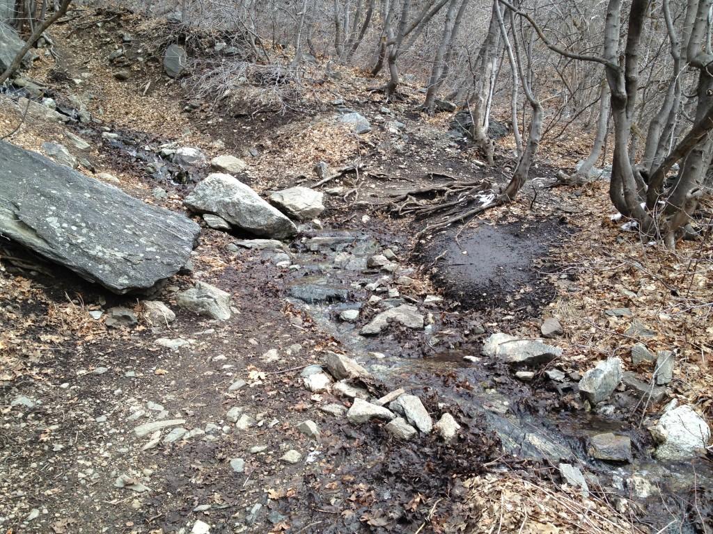 Snake Grass Falls Creek