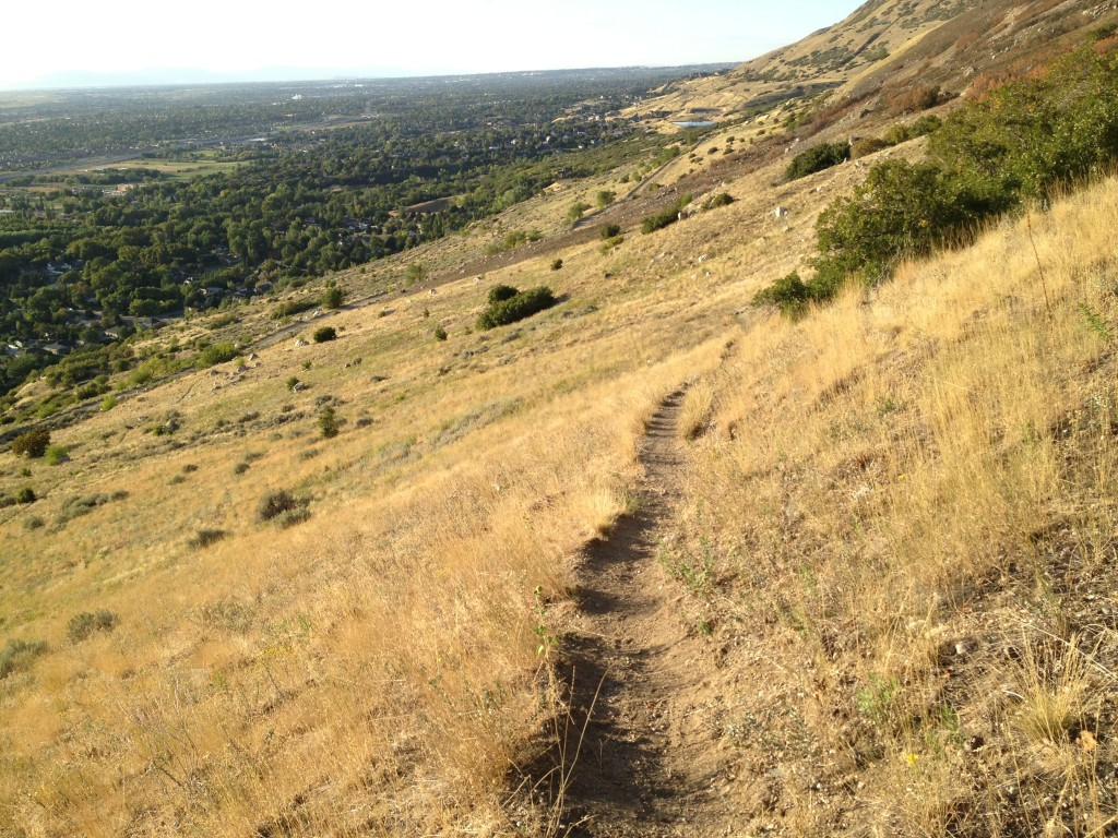This is the same trail you use to get to Patsy's Mine.