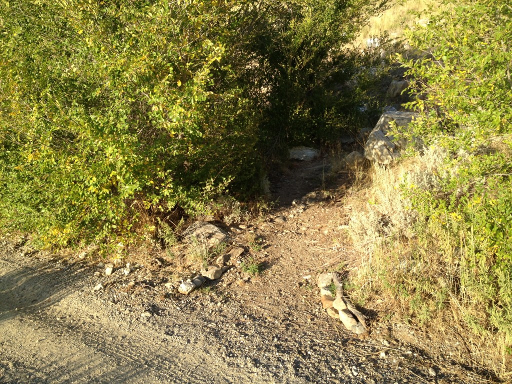 There is a marker at the trailhead