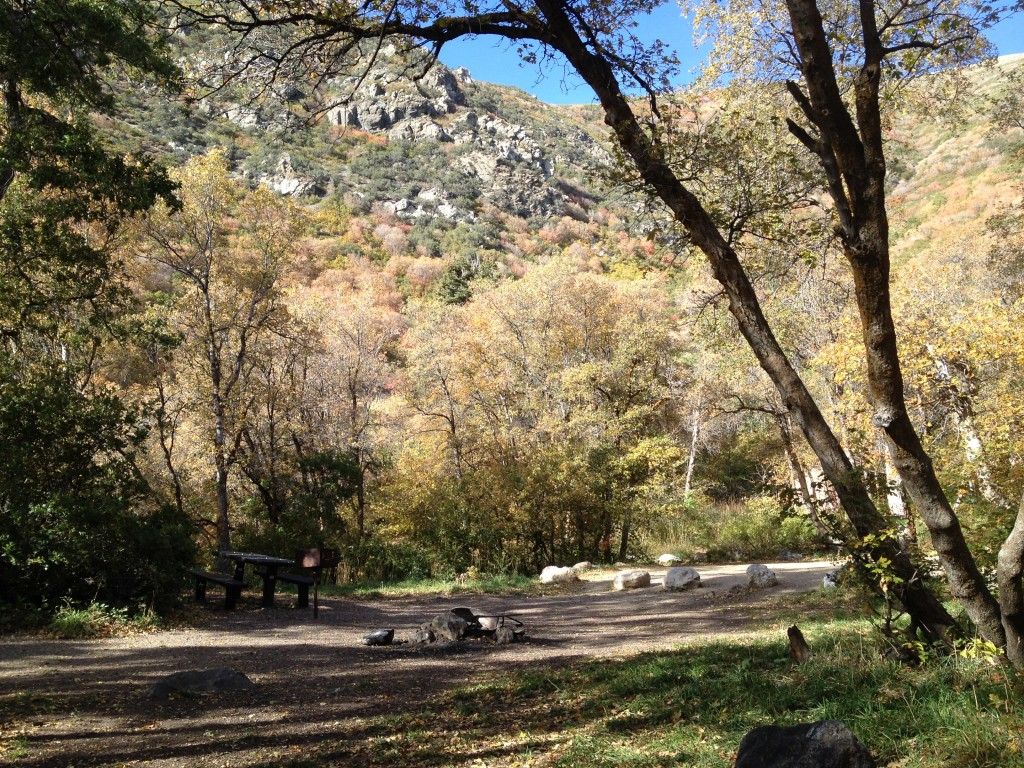 Great camping location. Several sites are big enough to accommodate larger groups.
