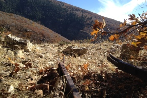 Hornet Canyon Mines - Farmington Utah
