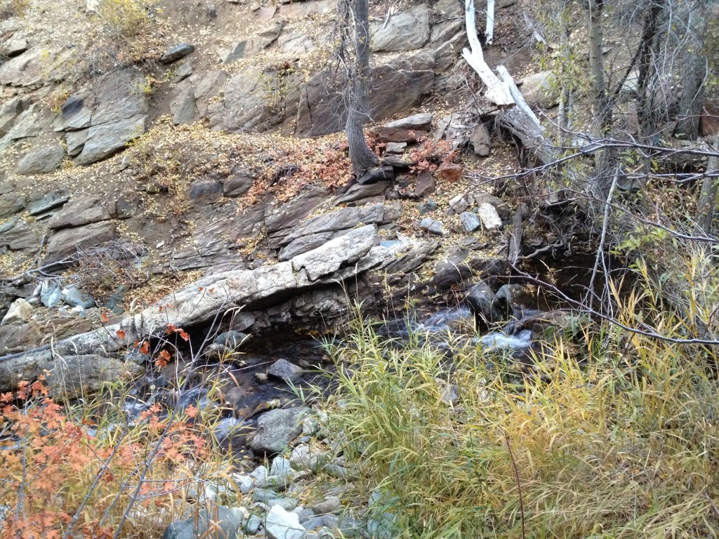 Cross over the creek in this area