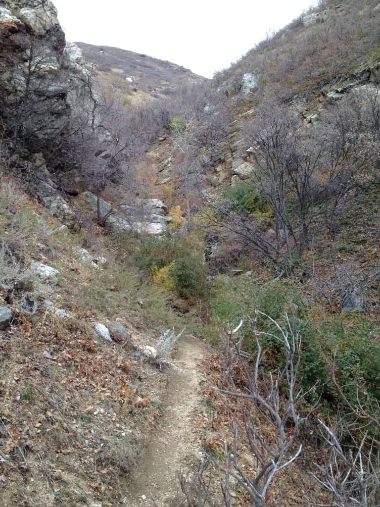 Inside Parrish Creek Canyon