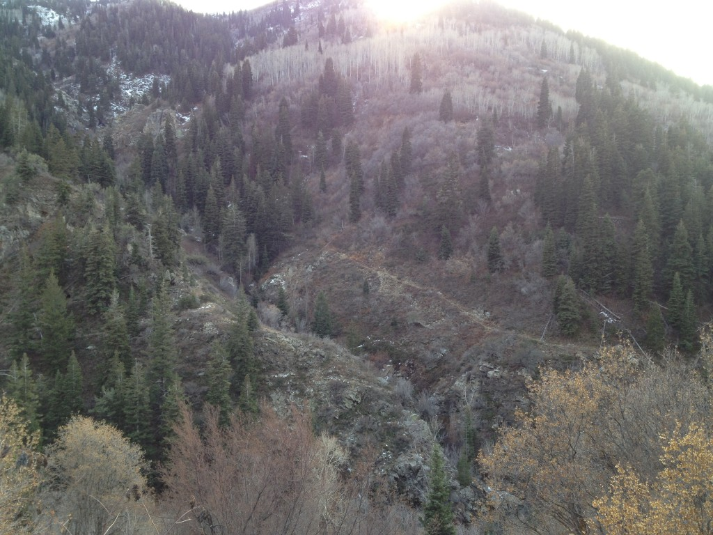 This is looking across the canyon into Miller Creek