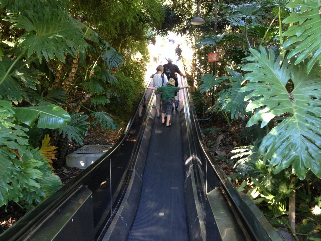 Escalator going up to the top of the Park Way