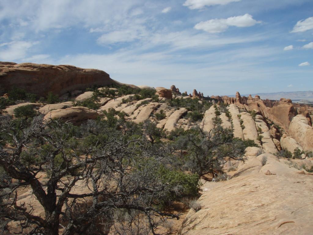 More sandstone fins