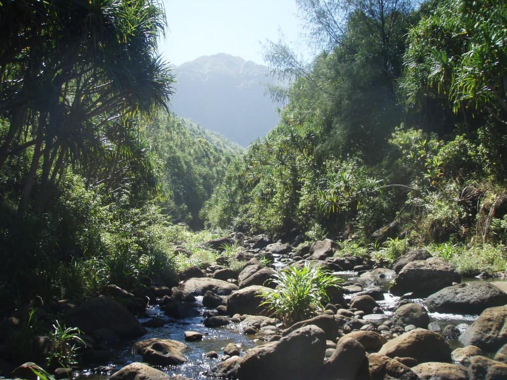 The creek near Hanakapiai Beach