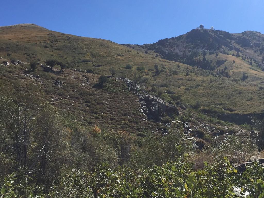 Baer Canyon
