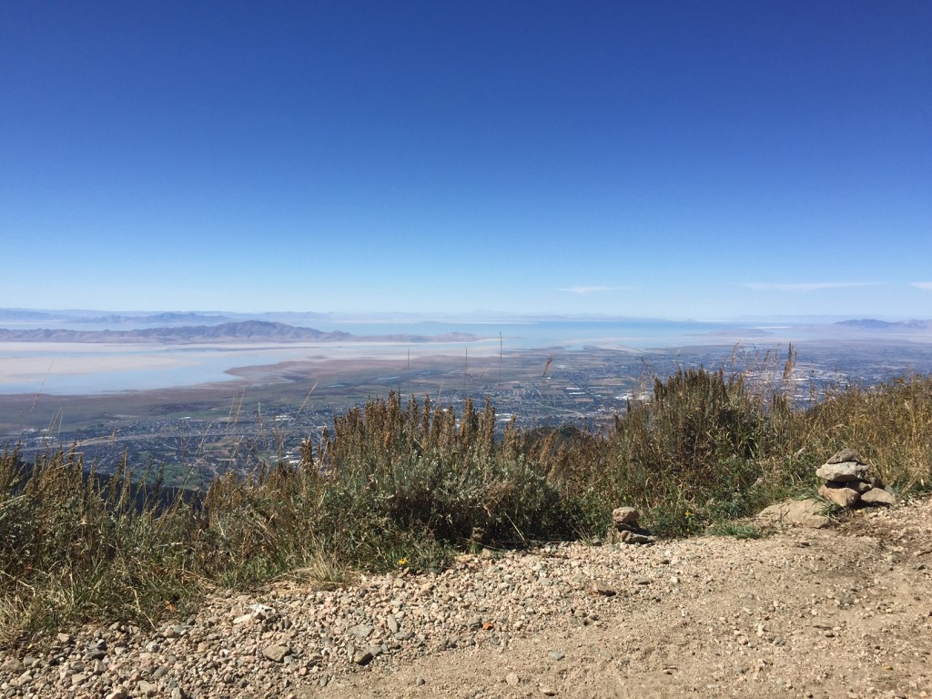 This is where the Baer Canyon trail ends