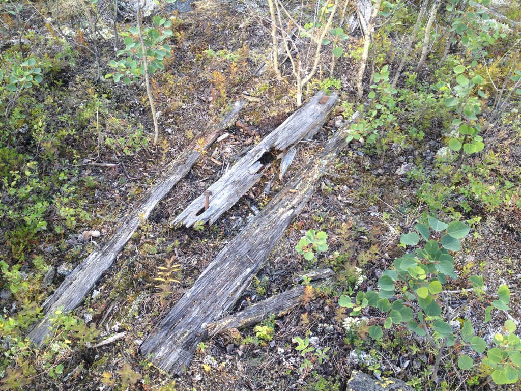 More pieces of wood scattered about