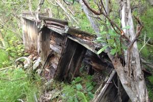 Yanert Coal Mine - Denali Alaska