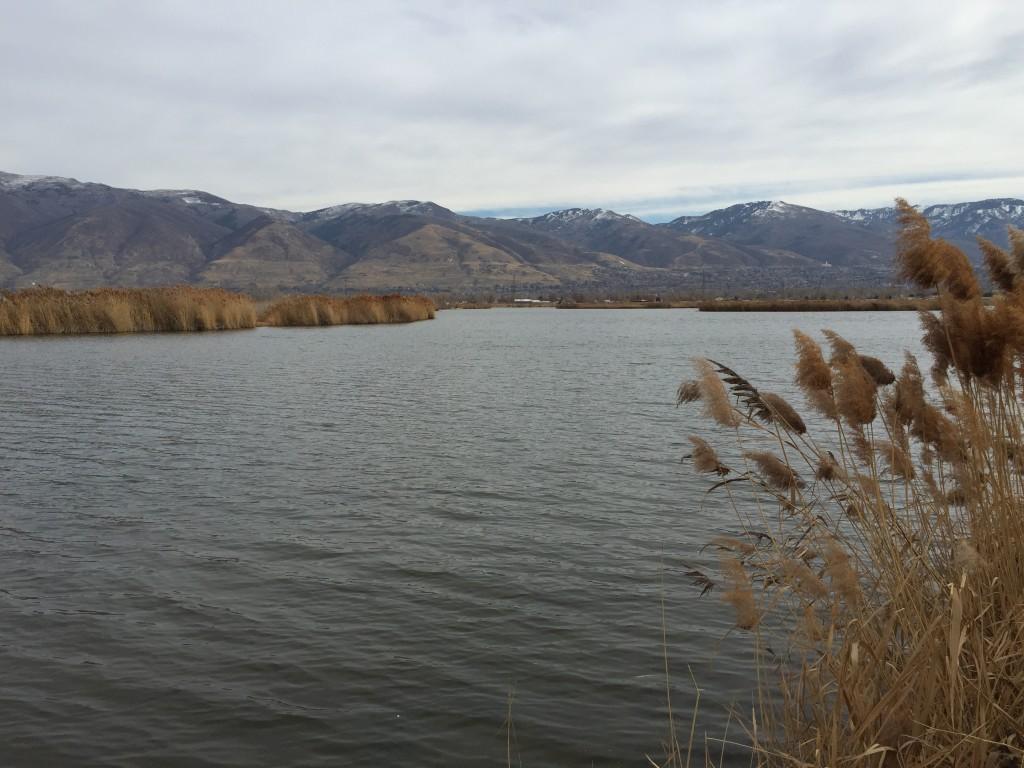 Bountiful Lake