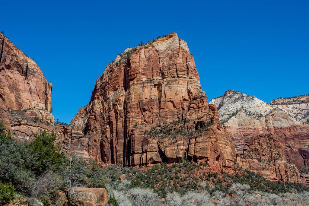 Hiker killed in high-elevation fall at Zion National Park
