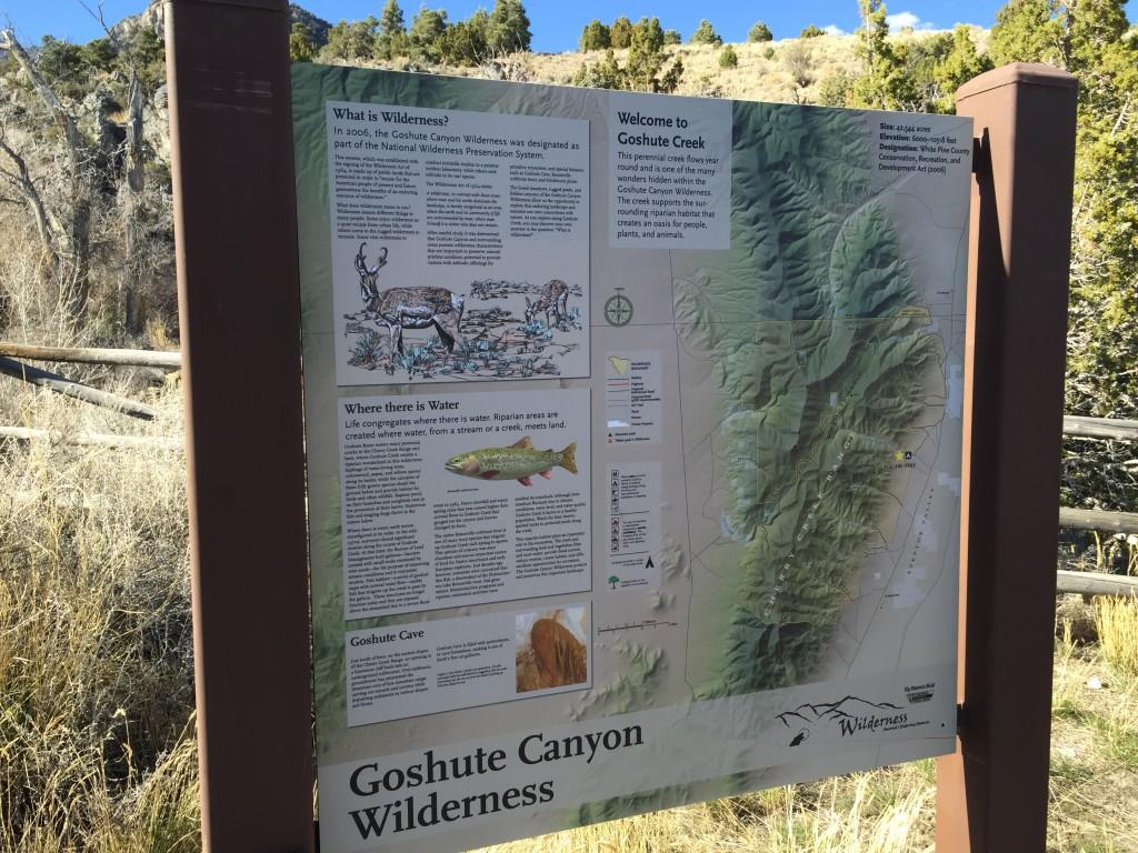 Goshute Creek