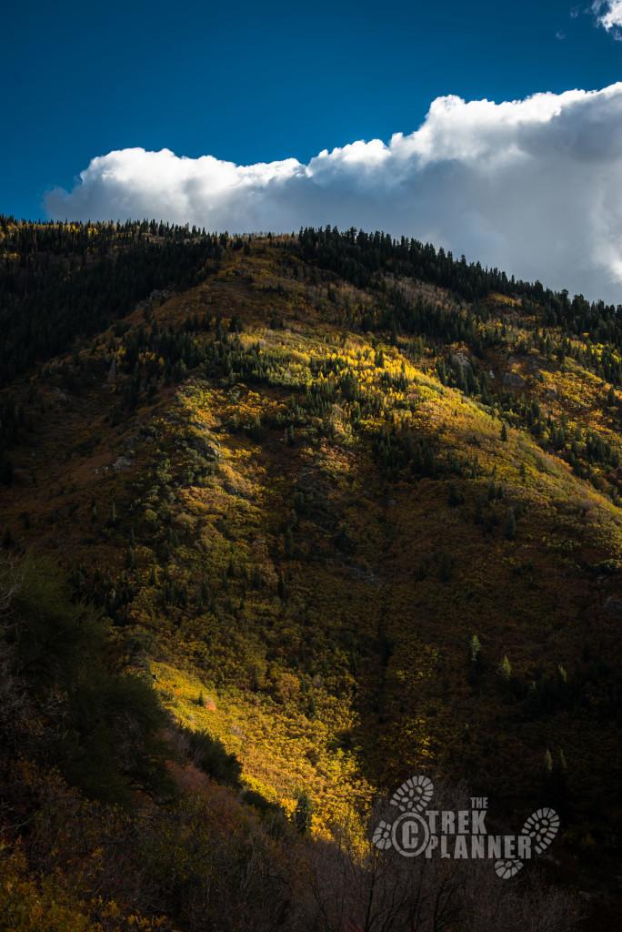Farmington Canyon.
