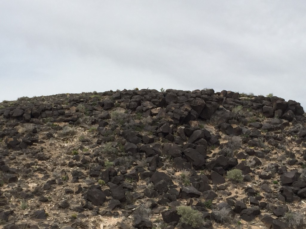 You can't really tell but we found several road runners on top of the mesa watching us