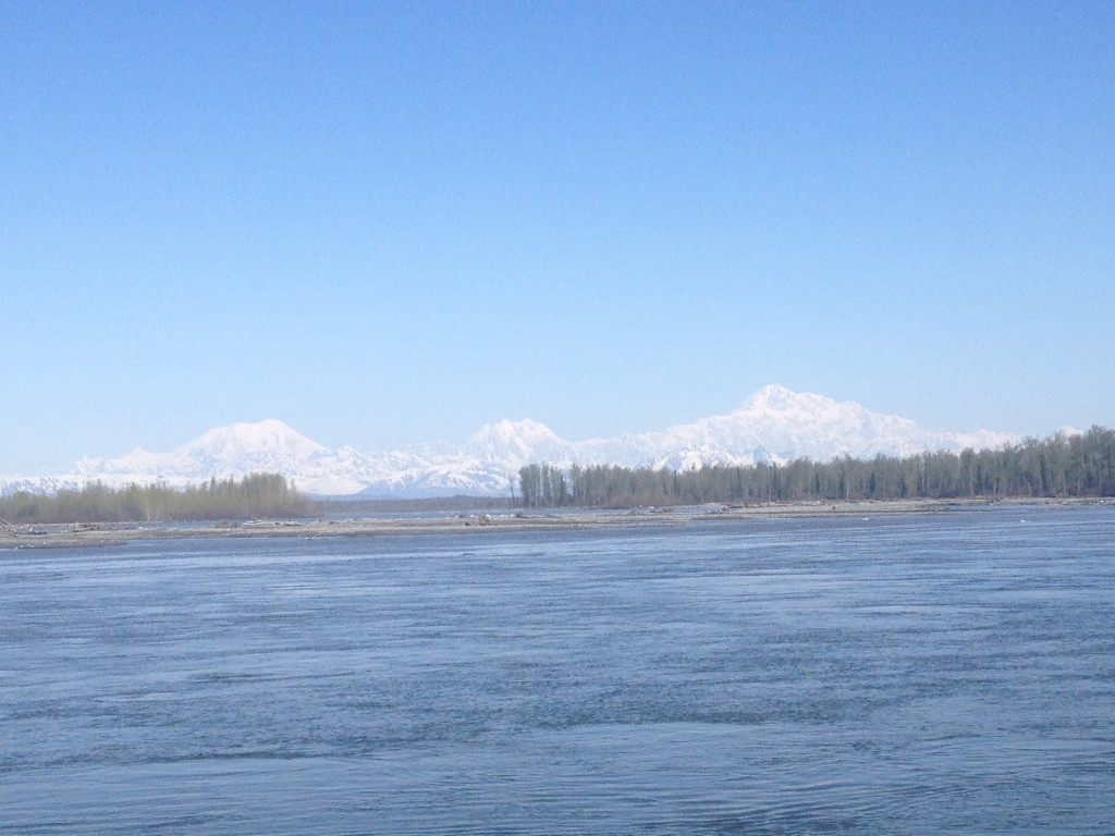 Seeing Denali from the banks of the Susitna river