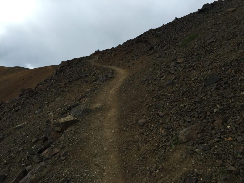 Alpine Trail Denali National Park