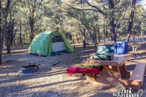 Strawberry Campground - Great Basin National Park