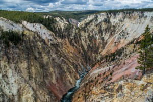 Canyon Area Overlooks - Upper, Lower, Crystal Falls - Yellowstone National Park