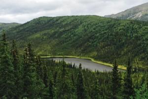 Triple Lakes Hike - Denali National Park Alaska