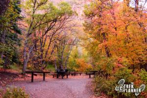 Maple Grove Campground - Fishlake National Forest Utah