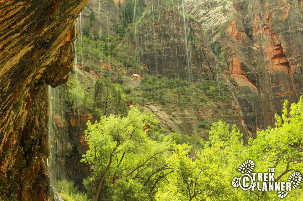 Weeping Rock - Zion National Park