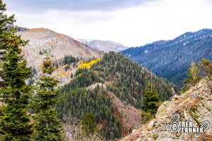 Mt. Aire Hike - Mill Creek Canyon Utah