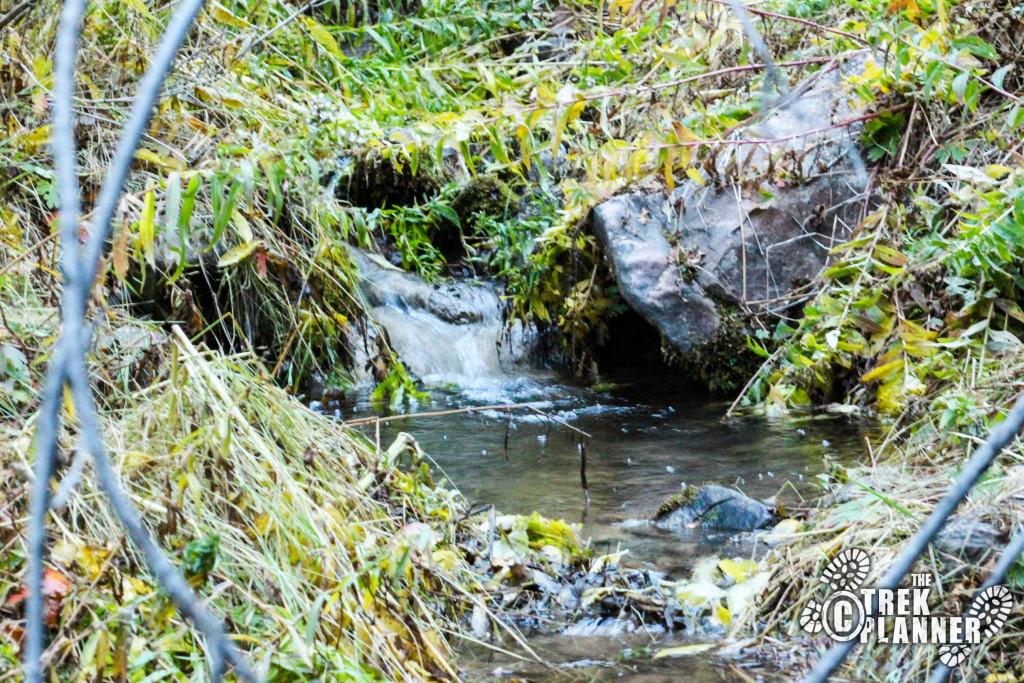 Elbow Fork creek