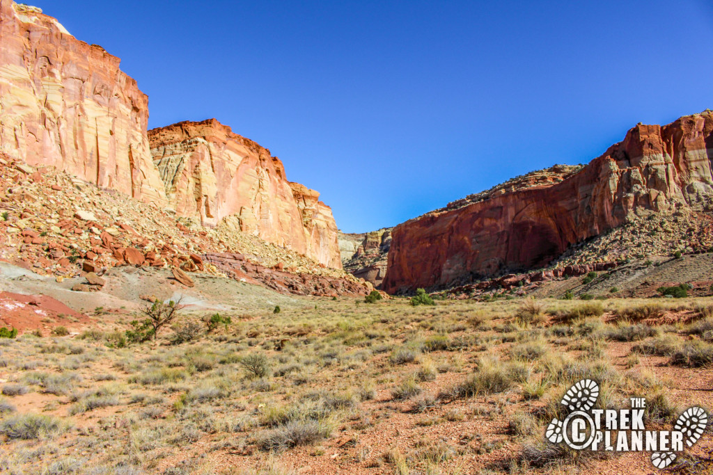 looking up Grand Wash Canyon