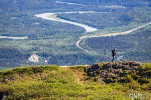Mt. Healy Overlook Trail - Denali Alaska