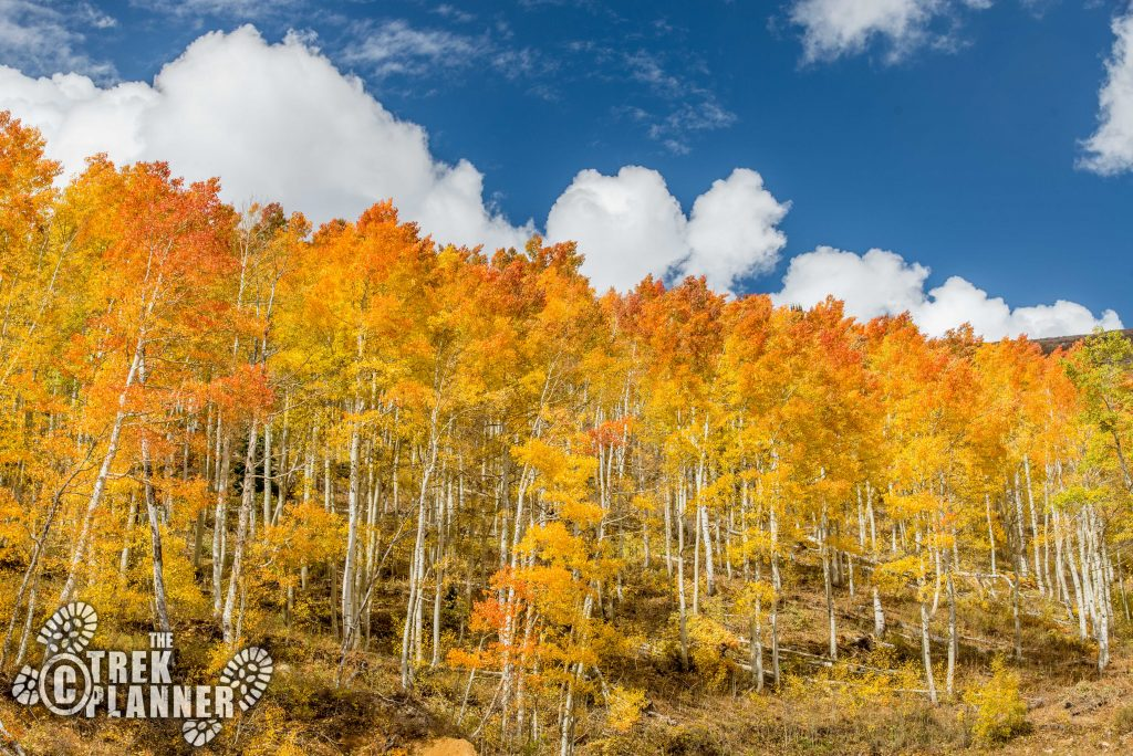Powder Mountain Scenic Drive - Utah