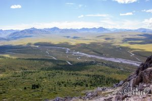 Savage Alpine Trail - Denali National Park Alaska