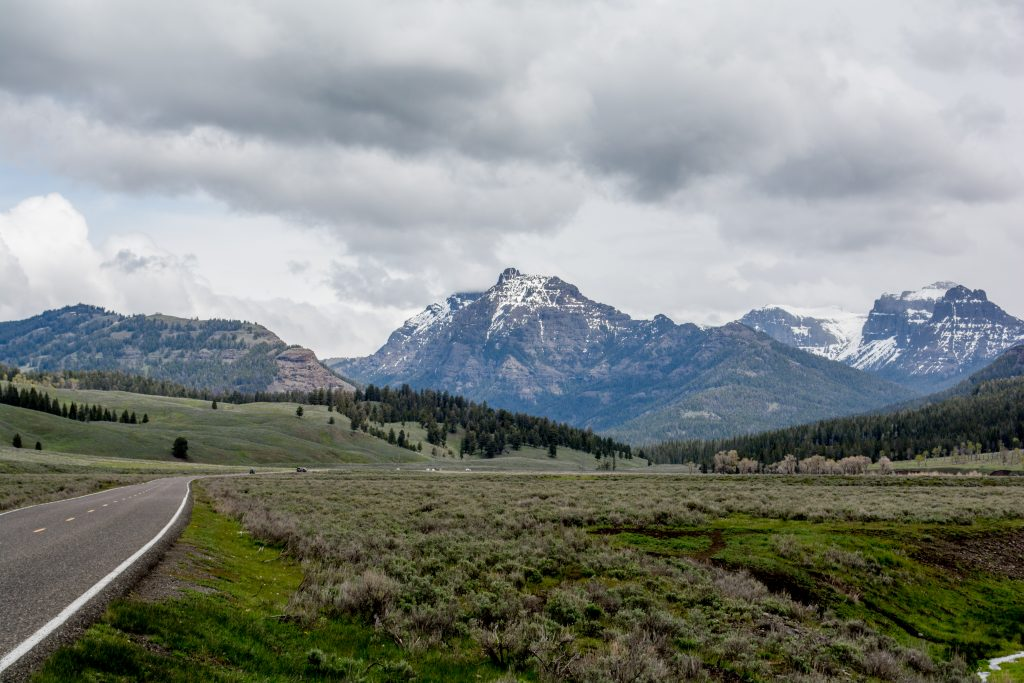 Yellowstone Driving Guide: Mammoth Hot Springs to Cooke City