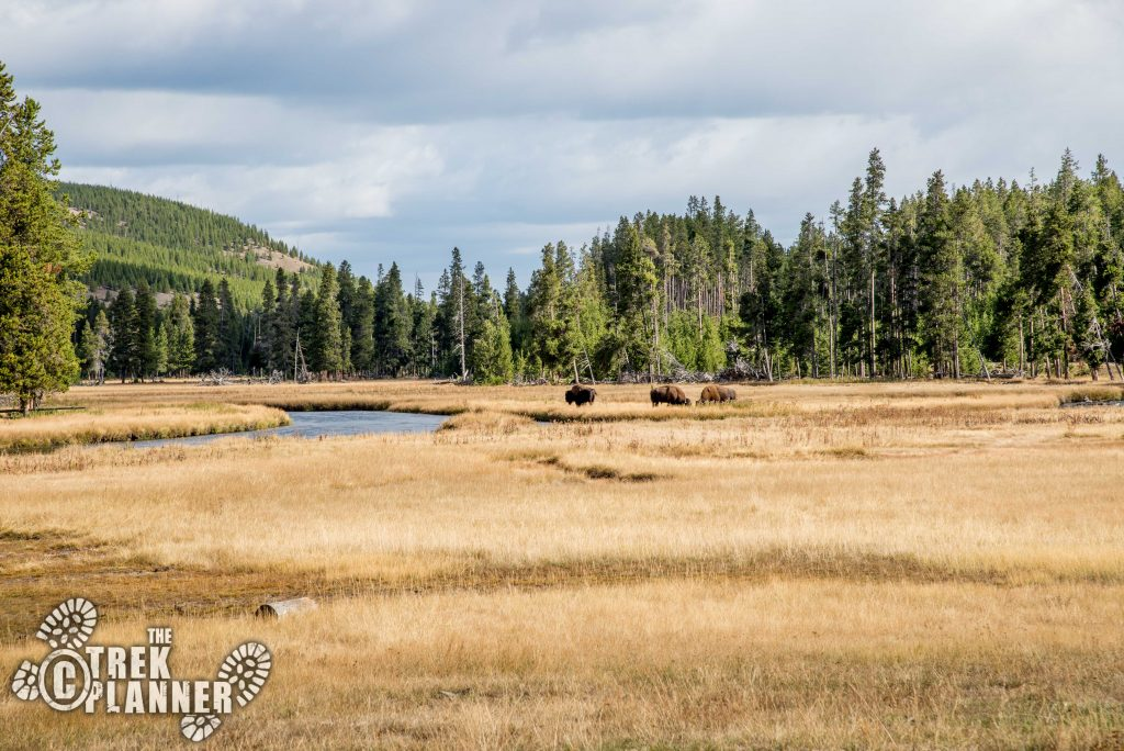 Yellowstone Driving Guide: Madison Junction to West Thumb